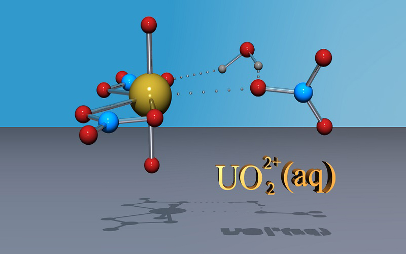 Simulation of the reactivity and sorption of uranyl